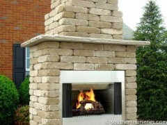 Southern Tradtion Wood-Burning Fireplace