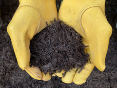 Forever Brown Mulch