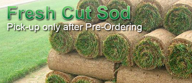 Fresh Cut Sod - pick-up, delivered, or installed